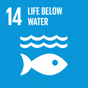 Target 14.1 prevent and significantly reduce marine pollution of all kinds,