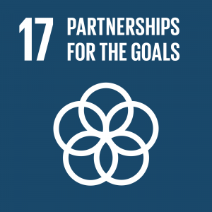 Target : 17.2 Developed countries to implement fully their official development assistance commitments, including the commitment by many developed countries to achieve the target of 0.7 per cent of gross national income for official development assistance (ODA/GNI) to developing countries and 0.15 to 0.20 per cent of ODA/GNI to least developed countries;